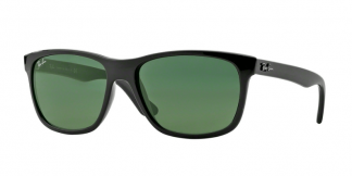 Ray-Ban 4181 Replacement Parts