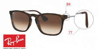 Ray-Ban 4187 Replacement Parts