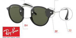 Ray-Ban 2447 Replacement Parts