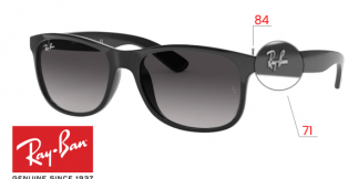 Ray-Ban 4202 Replacement Parts