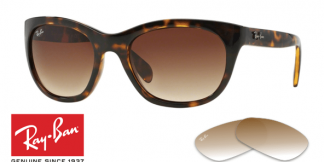 Ray-Ban 4216 Replacement Lenses