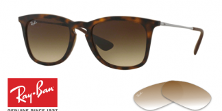 Ray-Ban 4221 Replacement Lenses