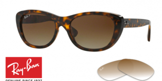 Ray-Ban 4227 Replacement Lenses