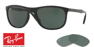 Ray-Ban 4291 Replacement Lenses