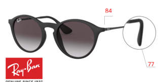 Ray-Ban 4243 Replacement parts