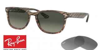 Ray-Ban 2184 Replacement Lenses